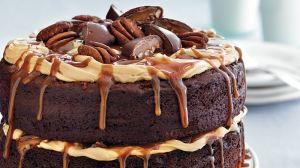 chocolae turtle cake